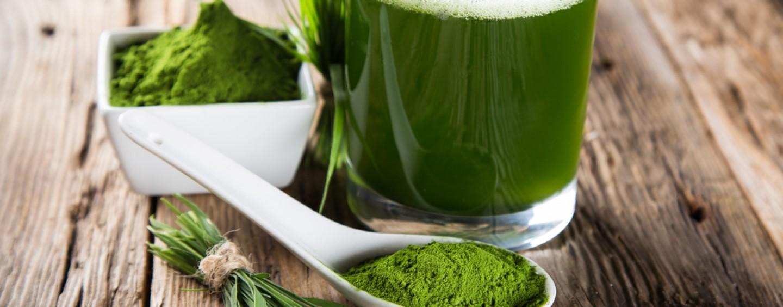 Chlorella kaufen – Darauf sollte man achten!