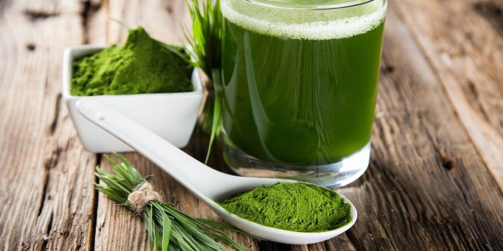 Chlorella kaufen für Detox und gesunde Ernährungegel
