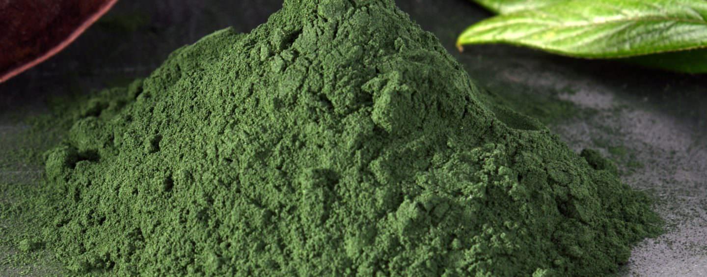 Spirulina –  Inhaltsstoffe und Anwendung der Superalge