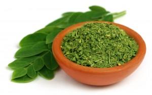 Ist Moringa die Nährstoffreichste Pflanze der Welt?