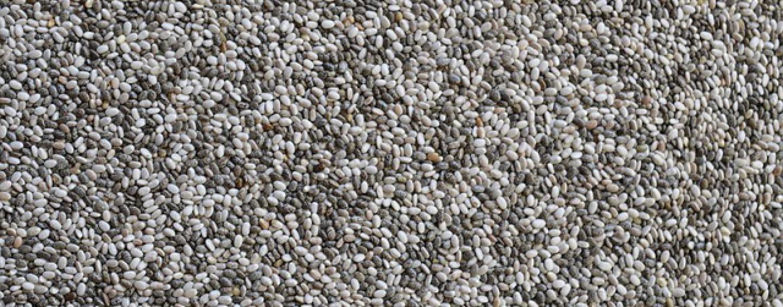 Chia Samen – Wirkung und richtige Dosierung
