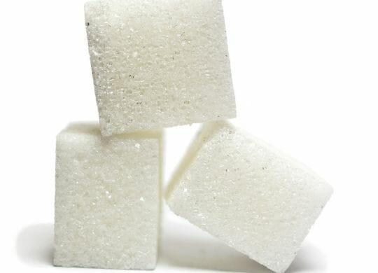 Macht Zucker dick?
