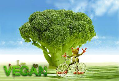 Veganismus und Sport – wie veganes Proteinpulver dich unterstützt