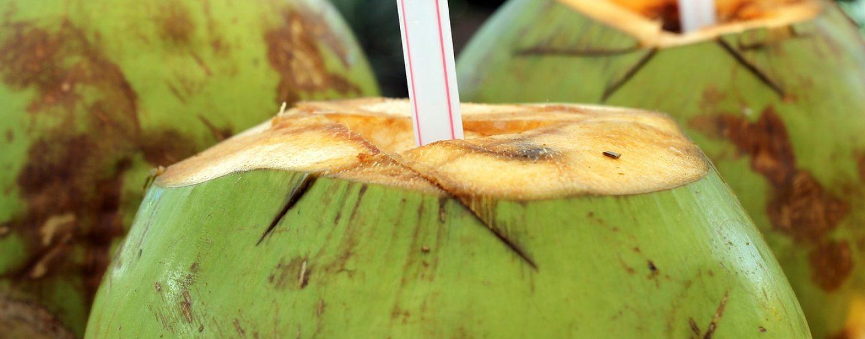 Kokoswasser – der Jungbrunnen aus den Tropen