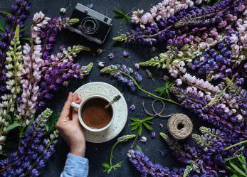 Lupinenkaffee – gesunde Alternative für Kaffeeliebhaber