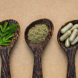 Moringa Pulver oder Kapseln kaufen – worauf sollte ich achten?