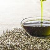 Hanföl – Wie gesund ist es und wofür wird es verwendet?