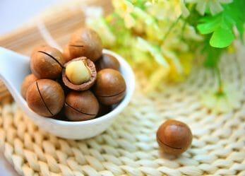 Macadamianussöl – Das Öl der Königin der Nüssse