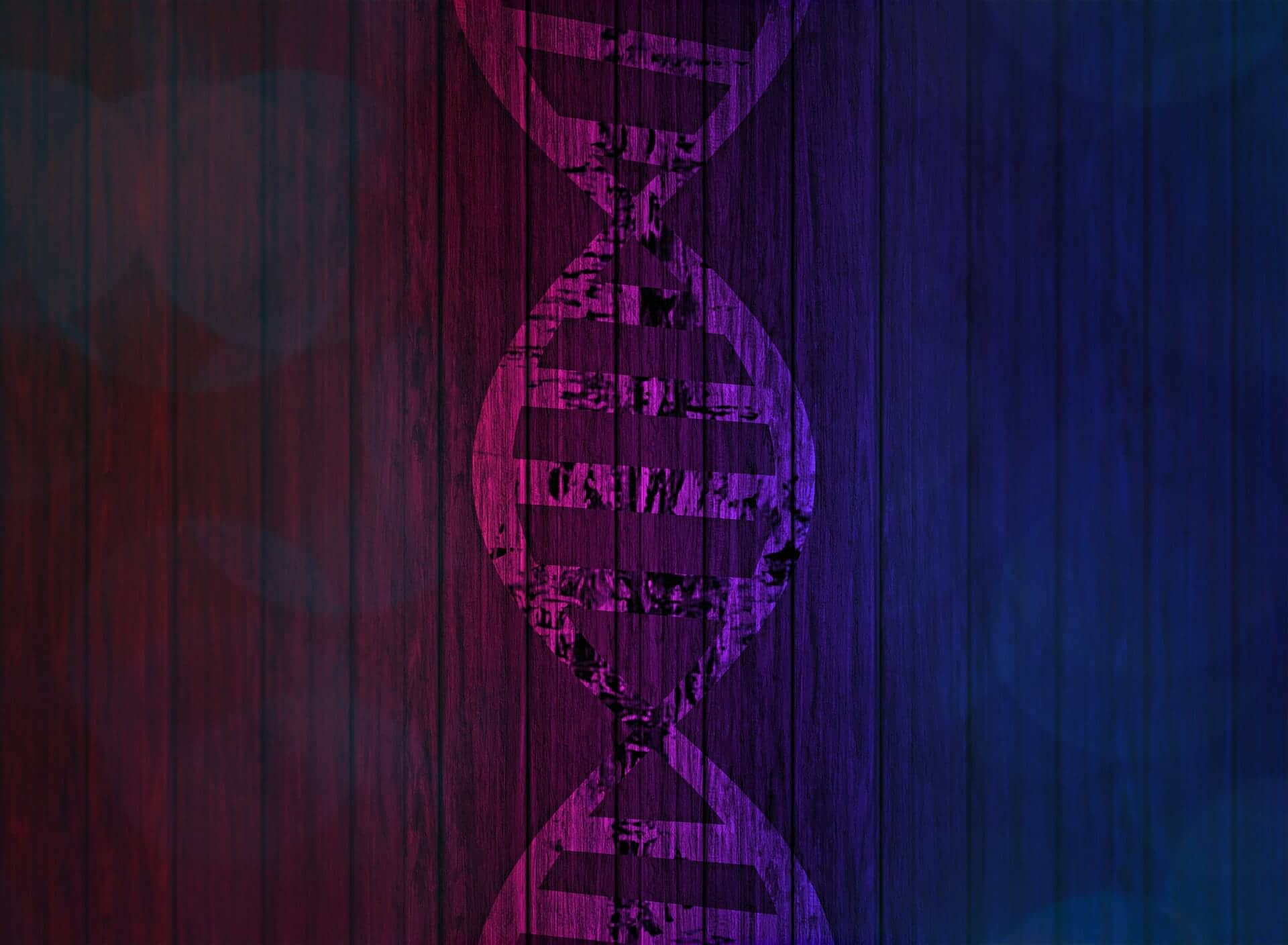 Aminosäuren – Grundbausteine des Lebens und des menschlichen Körpers